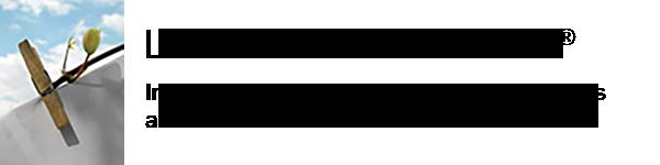 La Grande Lessive Logo